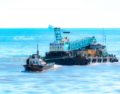 野蒜海岸復旧工事