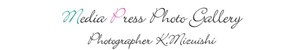 MediaPress Photo Gallery